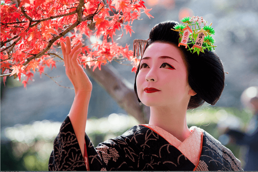 Training of Geisha