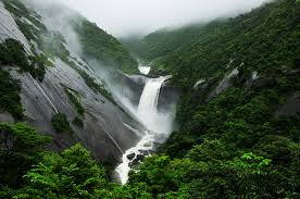 Yakushima waterfalls